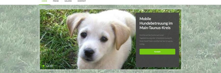 Website Hundebetreuung